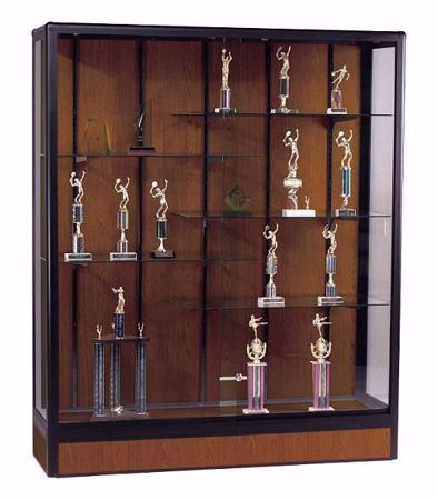 Picture for category Trophy Cases