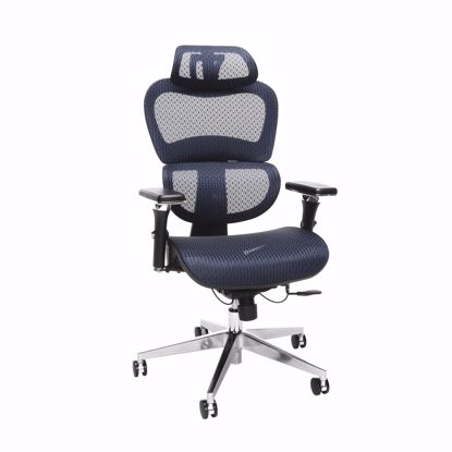 Picture of Ergo Mesh Chair with Headrest BLUE