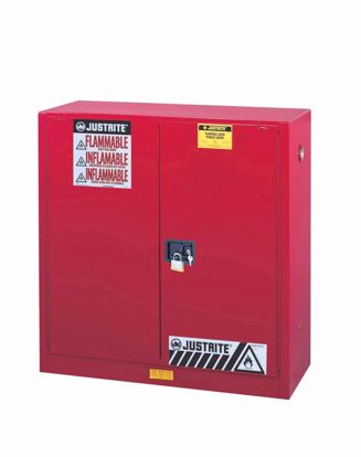Picture of PAINT/INK METAL STG CAB - 30 GAL
