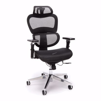 Picture of Ergo Mesh Chair with Headrest BLACK